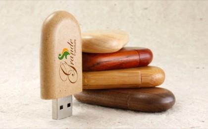 Sapling Custom Flash Drives